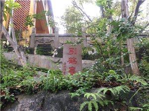 漫步金光寺