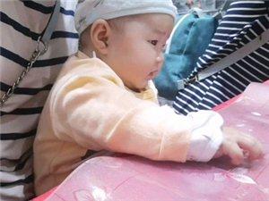 小侄女,4个月零几天,看电视越来越有劲儿