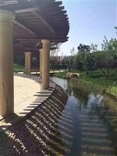 固安天元,�o�新�C�觯�北京一河之隔外地人可�J款