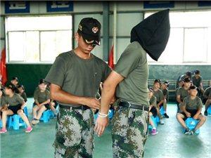 猛进少年军夏令营驻富平县招募营员中!你敢来挑战吗?