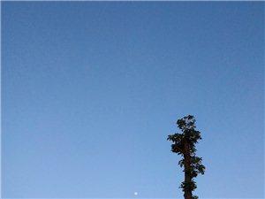 【新聊斋】生是故乡人,死是故乡魂图文/孙冰这金道士听说当年学道士是受过诫的,所谓受诫,听老一辈说
