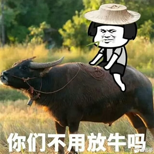 忽然好想去放牛,没有浆糊套路,没有压力。以我的智商只放一头,多了我也数不过来,它吃草,我在它身上睡觉