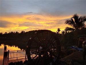 夕阳下的琼海胜达休闲农业观光园