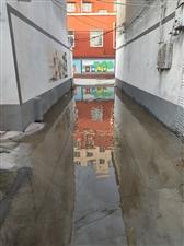 这就是金沙平台网址嵖岈山路十一巷前几天刚修的水泥路!
