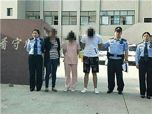 阻碍交警执法被处罚