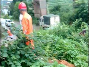 碧波唐家寨,电杆倒塌砸中维修人员。