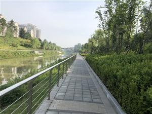 溧水中山河、一干河�砂督��^改造,�V大市民休�e,健身有了好去�,美中不足的是缺少公共�l生�g指示牌!