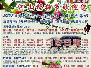 河山村杨梅节