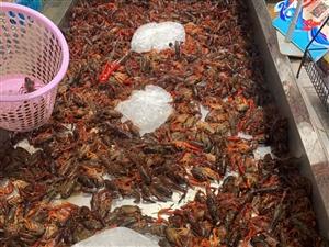 永辉超市的小龙虾才16.9一斤,不过有点小!