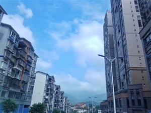 今天天气不错,蓝天白云,顺手抓拍一张分享一下。