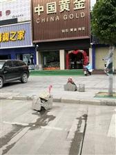 随着潢川汽车保有量的增加,停车难已成为不少潢川市民最为头疼的事情。特别是在人流量、车流量较多的地段,