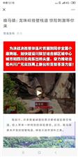 苍溪县唤马镇五峰峡漂流开漂啦!