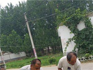 """石寨铺镇张湾村党支部开展""""环境卫生清理大扫除""""活动"""
