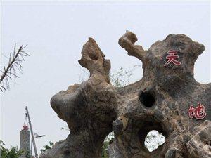红星闪耀的周恩来纪念园(滨州)