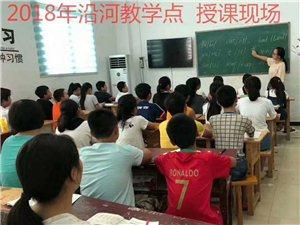 新青年辅导机构