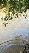 寻乌吉潭镇礼齐村非法采沙,导致河水混浊,给当地村民带来极大的生活不便,望有关部门共同监管!
