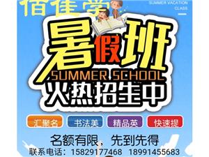 诚招小初老师/暑假实习老师
