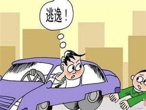 金沙平台网址法院:被执行人交通事故逃避责任网络查控现其原形