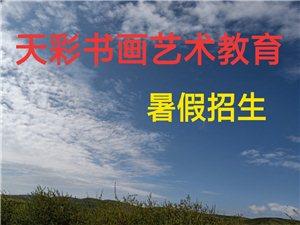 �V�h市天彩少�������g教育暑假正在招生,由主�k老���H自上�n