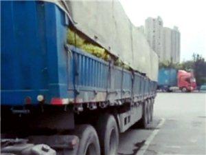 一货车运送青梅,途径寻乌南桥收费站不予免费通行引发关注!
