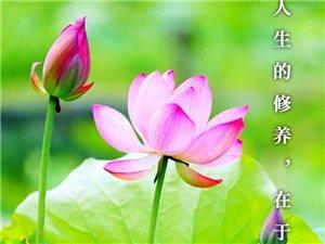 人生的修�B,在于�D悟,也在于�o修。