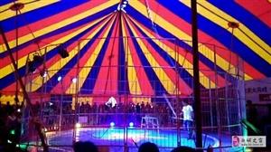 皇家大马戏全球巡演-澳门金沙城中心,澳门金沙官网站