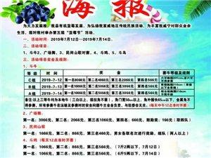 麻江蓝莓名镇海报