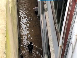 亲历汇川板桥镇大洪水