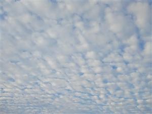 请到博兴在线来看云