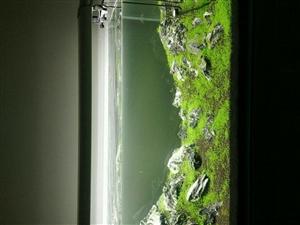 大品牌设备1.2米超白水草缸