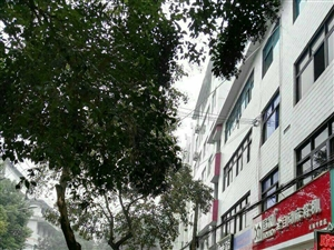 长阳紫隆小区街对面临江临街两室一厅出租