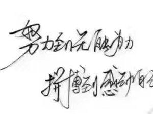 台湾宝勇南瓜子精片