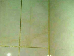專業瓷磚美縫,衛生保潔