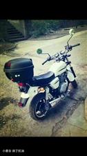 全新125摩托车低价出售