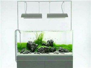 智慧生活鱼缸设计制作与维护