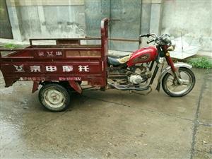 宗审110三轮摩托车