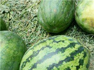 自己地里种的,纯绿色食品,无添加