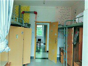武汉大学学生公寓1室1厅1卫300元/月