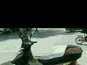 800元出售电动摩托车电瓶车