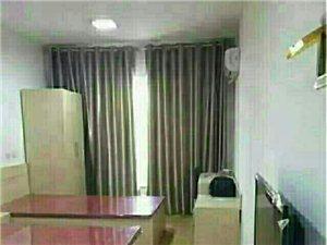 威乐公寓1室1厅1卫700元/月