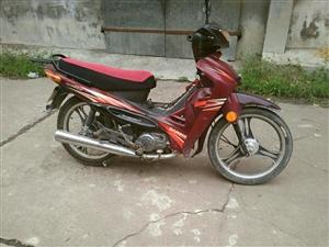 建设JS110弯梁摩托车