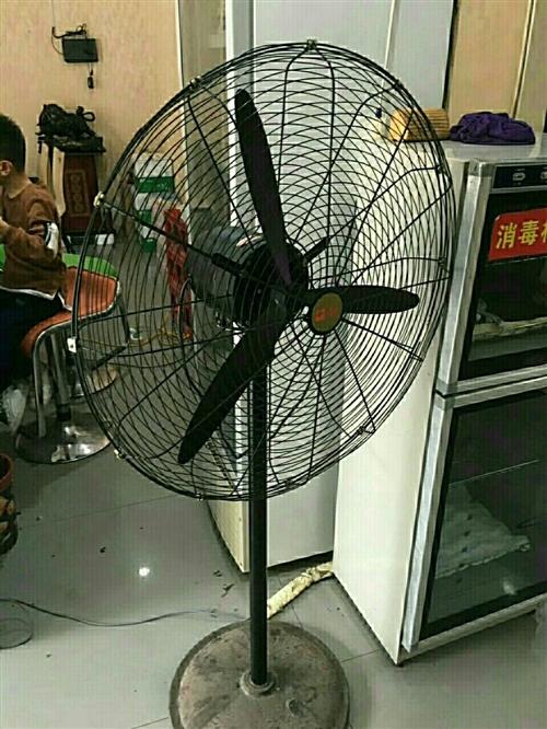 出售电风扇