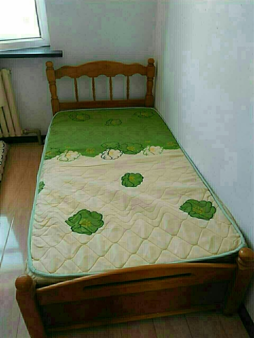 常年出售二手木床,铁床,上下铺,双人,单人,都有
