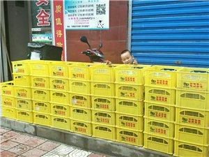 黄马甲鲜奶配送增加15个订购点