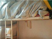 出售上下铺床,床垫,九成新