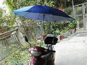 大洋踏板摩托车,车况良好,动力十足,一直...