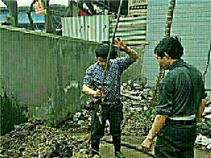 专业保洁 专业疏通下水道 专业清洗地毯