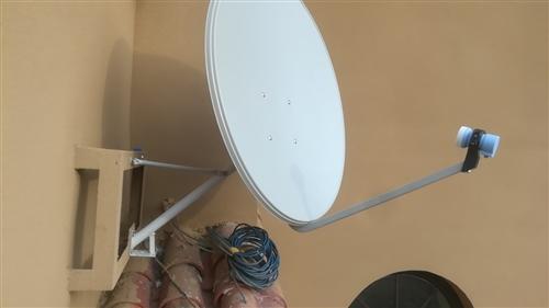 小鍋天線,59節目,各省衛視     7887123