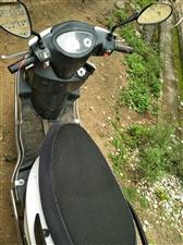 自用女装摩托车用了一年三个月,打算明年出广东,所以想转让,手续全,非诚勿扰