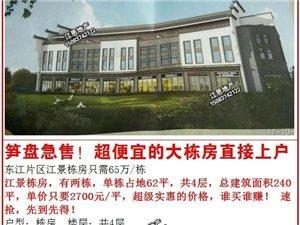 东江5室2厅3卫65万元